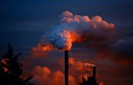 Blindagem Jurídica Ambiental: a melhor estratégia contra as multas