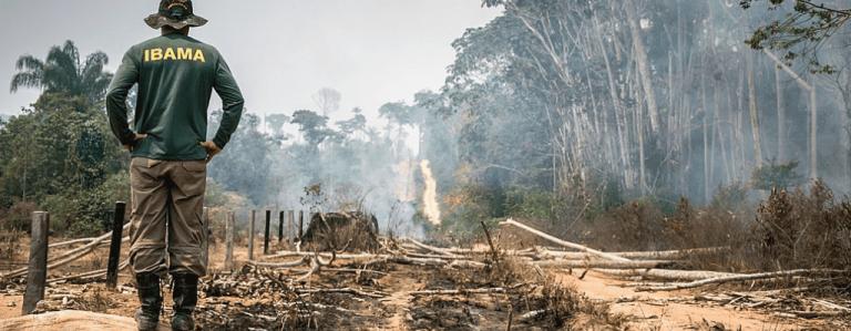 Artigo 'Advogado especialista em multa ambiental'